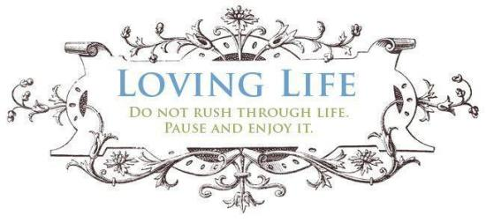MS Love Life image