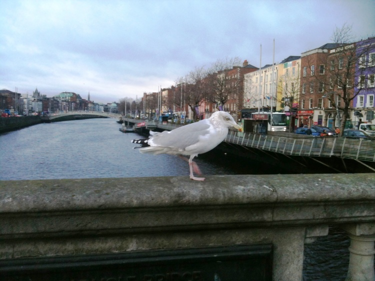 View on the Liffey, Dublin