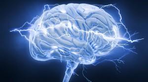 brain-300x168