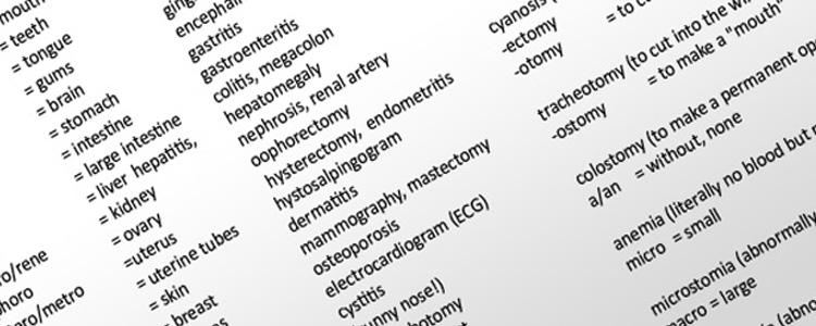 Image terminology