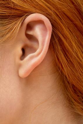 human_ear