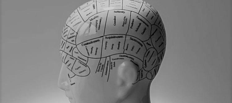 model-of-human-brain